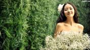 美丽写真 婚礼婚庆电子相册 图 免费下载 蚁窝网