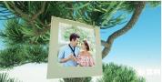 海天海边夏日树枝上悬挂的图片视频相册婚礼相册AE模板
