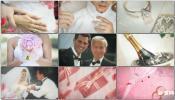 婚礼电子相册玫瑰人生 婚纱相册婚礼现场AE模板免费下载