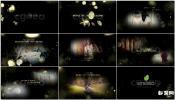 黑色豪华土豪金色婚礼视频摄影师包装设计AE模板免费下载