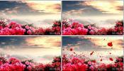 映山红中国民歌红歌晚会 活动 婚礼 民歌 山歌 视频素材