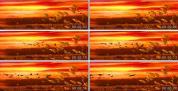 芦苇湖 大雁飞 夕阳红 雁南飞 晚会节目LED背景 视频 素材
