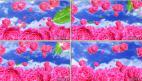 满天飞舞 红玫瑰 花海 婚礼 婚庆 喜庆 晚会节目 LED背景视频