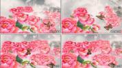 国画牡丹蝴蝶 牡丹花开 盛世牡丹 晚会节目喜庆led视频素材