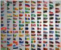 AE模板-E3D国家旗帜飘动模型素材包 Element Flags Pack