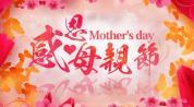 AE模板823感恩母亲节妇女节温馨幸福母亲节蝴蝶花朵花瓣视频