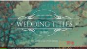 AE模板-10组婚礼文字标题动画 Wedding Titles