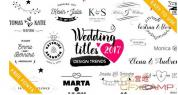 AE模板-19组欧式婚礼文字标题动画 Wedding Titles