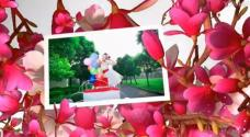 ed7.32模板 爱在花丛中婚礼电子相册ED模板免费下载