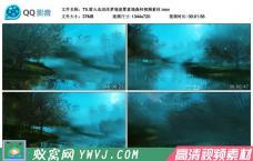 T5.萤火虫沼泽梦境迷雾意境森林卡通梦幻视频素材