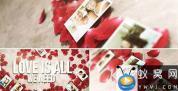 AE模板-玫瑰花瓣婚礼照片相册片头 Rose Petals Heart – Photo Gallery