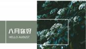 p27时尚绿色清新八月你好主题相册PPT模板